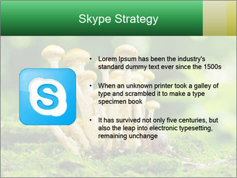 Mushrooms honey agaric in a forest PowerPoint Template - Slide 8