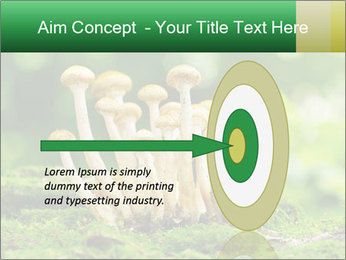 Mushrooms honey agaric in a forest PowerPoint Template - Slide 83