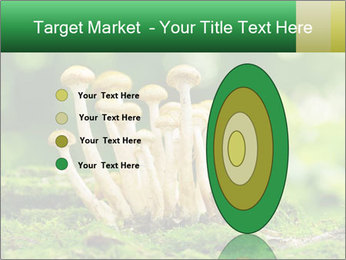 Mushrooms honey agaric in a forest PowerPoint Template - Slide 84