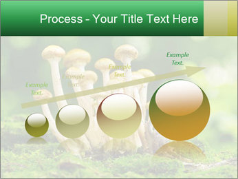 Mushrooms honey agaric in a forest PowerPoint Template - Slide 87