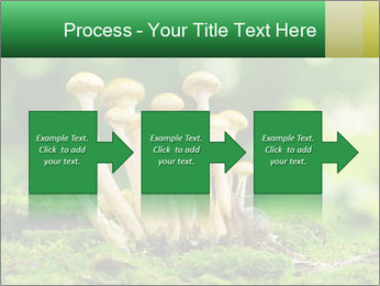 Mushrooms honey agaric in a forest PowerPoint Template - Slide 88