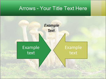 Mushrooms honey agaric in a forest PowerPoint Template - Slide 90