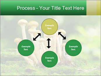 Mushrooms honey agaric in a forest PowerPoint Template - Slide 91