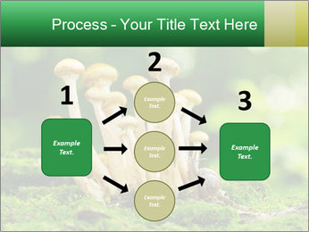 Mushrooms honey agaric in a forest PowerPoint Template - Slide 92