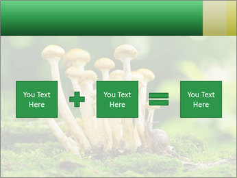 Mushrooms honey agaric in a forest PowerPoint Template - Slide 95