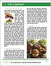 0000088214 Word Templates - Page 3