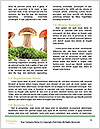 0000088214 Word Templates - Page 4