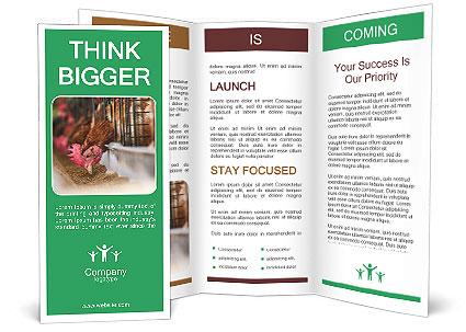 0000088215 Brochure Template