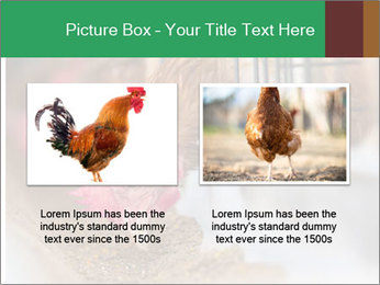 Eating and eggs PowerPoint Template - Slide 18