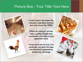 Eating and eggs PowerPoint Template - Slide 24