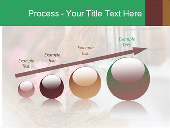 Eating and eggs PowerPoint Template - Slide 87
