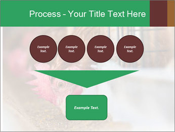 Eating and eggs PowerPoint Template - Slide 93