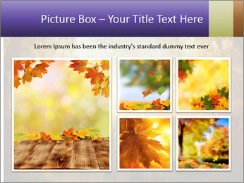 Autumn design - Forest with wood fence PowerPoint Templates - Slide 19