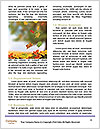 0000088225 Word Template - Page 4