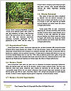 0000088230 Word Template - Page 4