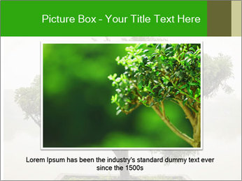 Chinese green bonsai tree PowerPoint Template - Slide 16