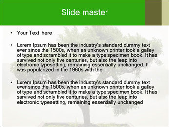 Chinese green bonsai tree PowerPoint Template - Slide 2