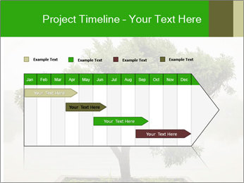 Chinese green bonsai tree PowerPoint Template - Slide 25