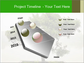 Chinese green bonsai tree PowerPoint Template - Slide 26