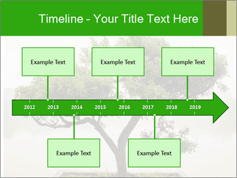 Chinese green bonsai tree PowerPoint Template - Slide 28