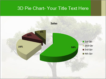 Chinese green bonsai tree PowerPoint Template - Slide 35