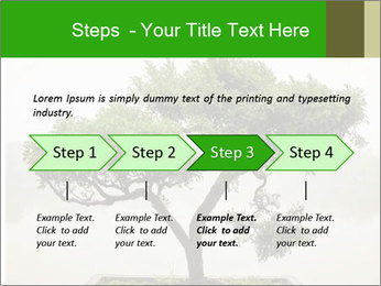 Chinese green bonsai tree PowerPoint Template - Slide 4