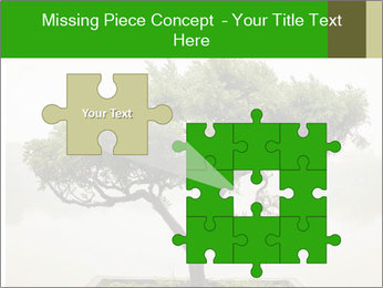 Chinese green bonsai tree PowerPoint Template - Slide 45