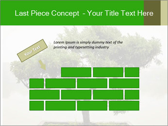 Chinese green bonsai tree PowerPoint Template - Slide 46