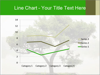 Chinese green bonsai tree PowerPoint Template - Slide 54