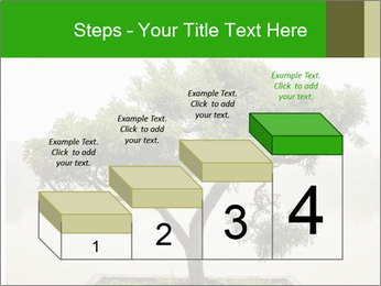 Chinese green bonsai tree PowerPoint Template - Slide 64