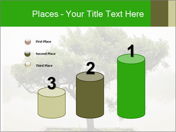 Chinese green bonsai tree PowerPoint Template - Slide 65