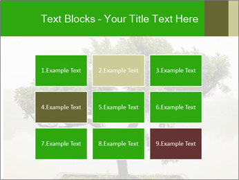 Chinese green bonsai tree PowerPoint Template - Slide 68