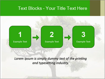 Chinese green bonsai tree PowerPoint Template - Slide 71