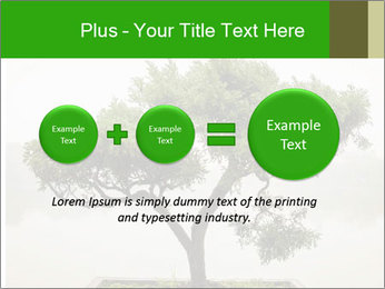 Chinese green bonsai tree PowerPoint Template - Slide 75