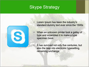 Chinese green bonsai tree PowerPoint Template - Slide 8