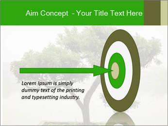 Chinese green bonsai tree PowerPoint Template - Slide 83