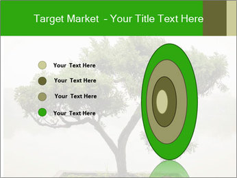 Chinese green bonsai tree PowerPoint Template - Slide 84