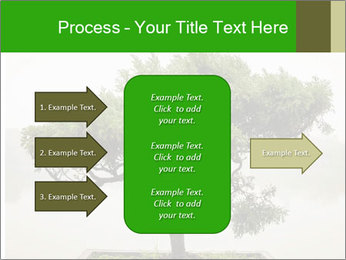 Chinese green bonsai tree PowerPoint Template - Slide 85