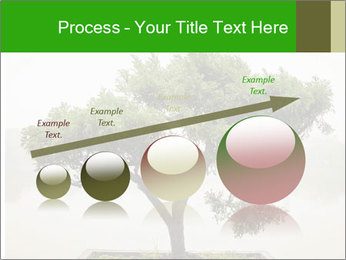 Chinese green bonsai tree PowerPoint Template - Slide 87