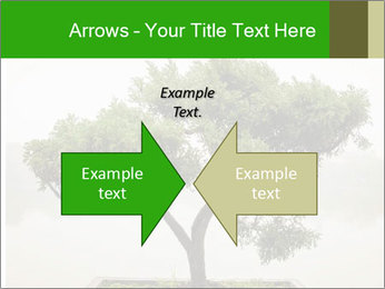 Chinese green bonsai tree PowerPoint Template - Slide 90