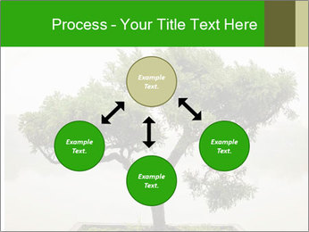Chinese green bonsai tree PowerPoint Template - Slide 91