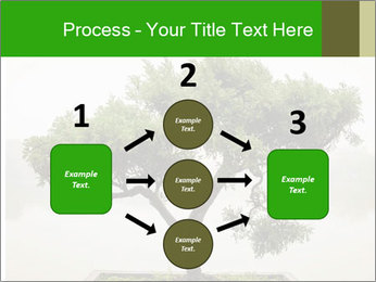 Chinese green bonsai tree PowerPoint Template - Slide 92