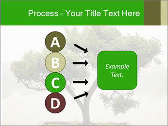 Chinese green bonsai tree PowerPoint Template - Slide 94