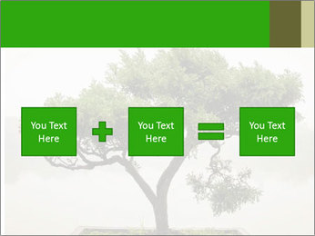 Chinese green bonsai tree PowerPoint Template - Slide 95