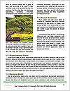 0000088231 Word Templates - Page 4
