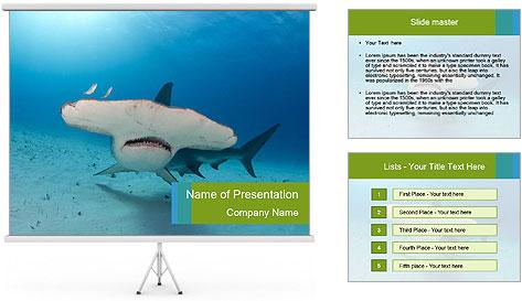 Shark in Bahamas PowerPoint Template