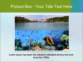 Shark in Bahamas PowerPoint Templates - Slide 16
