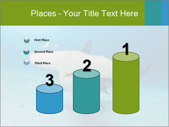 Shark in Bahamas PowerPoint Templates - Slide 65