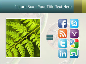 Two Green Fiddleheads On A Woodland PowerPoint Templates - Slide 21