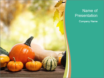 Assorted pumpkins and squashes on rustic wooden PowerPoint Template - Slide 1
